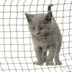 kattnät och balkongnät